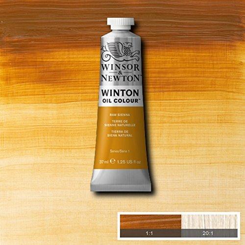 Winsor & Newton Winton Oil Paint Tube Artist Art 37ml & 200ml ALL COLOURS (Raw Sienna, 37ml) by Winsor & Newton