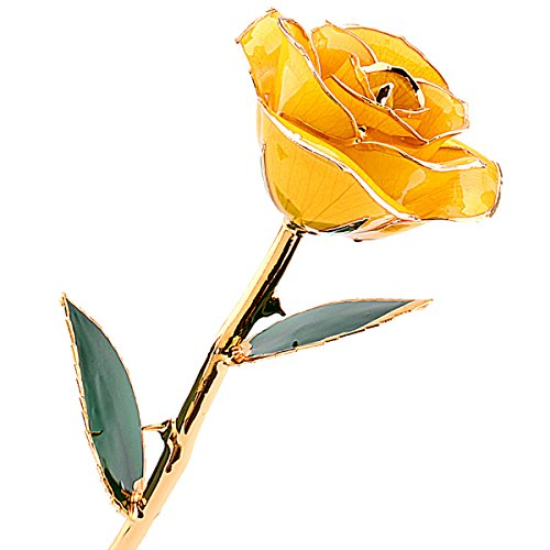 ZJchao Love Forever 24k vergoldet Echt Rose, Geschenk der Liebe (gelb)