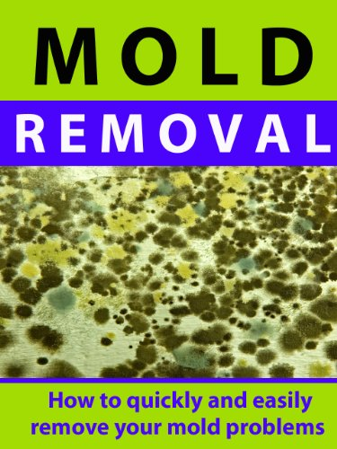 mold-removal-how-to-quickly-and-easily-remove-your-mold-problems