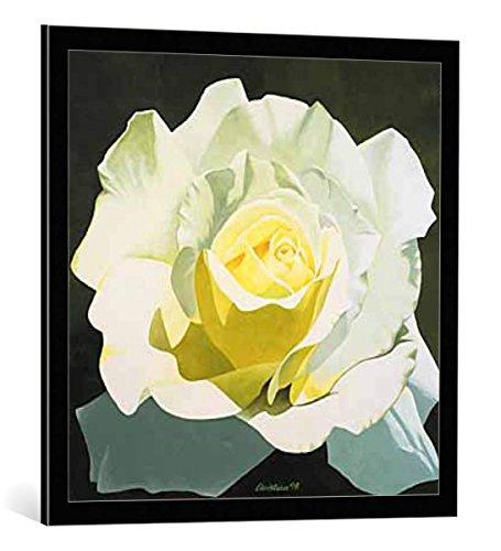 kunst für alle Bild mit Bilder-Rahmen: Christian Little Snow White weiße Rose - dekorativer Kunstdruck, hochwertig gerahmt, 70x70 cm, Schwarz/Kante grau (Snow White Bilderrahmen)
