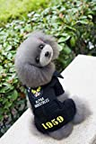 Pet Dress Home Invierno Ropa para Mascotas Ropa Volando águila suéter (Color : Black, Size : M)