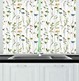 Ambesonne Floral Kitchen Curtains, Spring Season Themed Watercolors Painting of Herbs Flowers Botanical