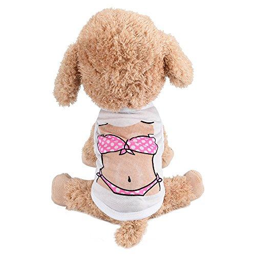 ste, Bikini Polyester Sommer Lustig Komisch Welpe Kostüm Hemd Haustiere Rock Hunde T-Shirt Kleider für Frühling Herbst ()