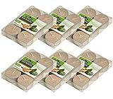 Dehner Duft-Teelichter 6 x 6 Stück, Stearin, Sandelholz, in weiteren Düften erhältlich