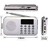 eJiasu Mini musica MP3 Audio Player radio FM digitale con USB slot SD Card Port TF Micro (rosso)