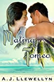 Front cover for the book Mating Tomeo by A.J. Llewellyn