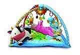 VTech Baby - Manta convertible en gimnasio (3480-146422)