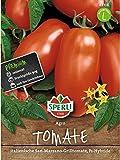 Tomate - Agro F1 Hybride