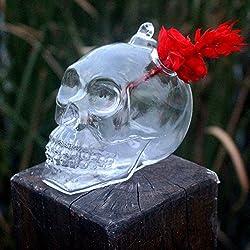 FUGL Creativo cráneo en forma de jarrón para plantas hidropónicas