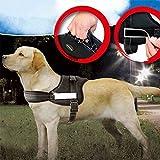 PowerLead - Guinzaglio per cane imbottito, pettorina per portare a spasso animali, resistente, per cani