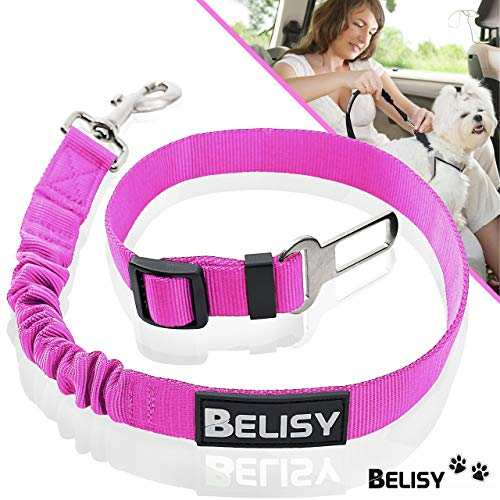 BELISY Correa Perro Coche en Nylon Elástico Ajustable – Cinturon Perro/Gato Coche – Correa Ajustable (60-80cm) para la Máxima Comodidad – Perros Grandes y Pequeños - Rosa