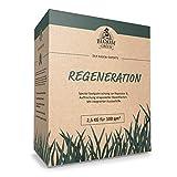 Regenerations-Rasen Bloom & Green I Rasensamen für die Rasen-Regeneration I Gras-Samen für die Erneuerung & Rasenpflege I Rasensaat für die Rasenreparatur I Schnellwachsende Rasen Nachsaat I 2,5 kg