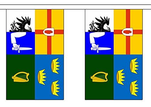 Irlande 4 Province Drapeau en polyester Guirlande 9 m (30 ') avec 30 fanions