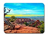 BGLKCS Mouse Pad (8.6'x7.1') - A Lot of Planets Monument Canyon Colorado Tree - Customized Rectangle Non-Slip Rubber Mousepad Gaming Mouse Pad
