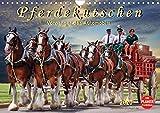 Pferdekutschen - Vorgänger des Automobils (Wandkalender 2020 DIN A4 quer): Kutschen, früher Statussymbol und das Reisefahrzeug schlechthin. (Geburtstagskalender, 14 Seiten ) (CALVENDO Tiere)