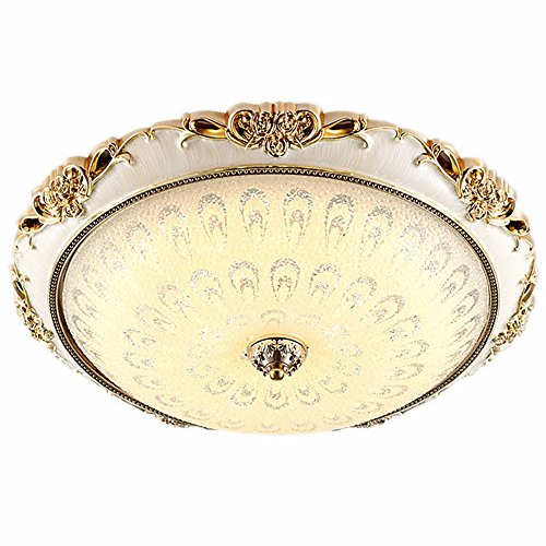 TIANLIANG04- Lámpara de techo,para Salón/Dormitorio/Cocina/Oficina/Hotel ronda,Control remoto sin electrodos platino plata 40cm 36W