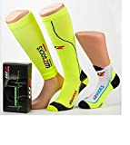 Pacchetto Race Compression WZ 2016 (M 39-42)