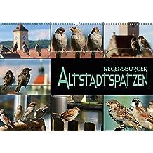 Regensburger Altstadtspatzen (Wandkalender 2018 DIN A2 quer): Spatzen abgelichtet in einer historischen Stadt (Monatskalender, 14 Seiten ) (CALVENDO Tiere)
