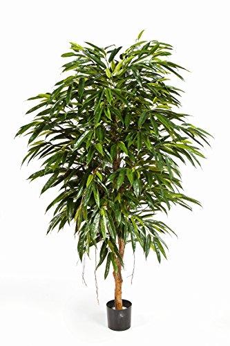 artplants Set 2 x Königliche Deko-Longifolia HISA, 908 Blätter, grün, 150 cm – Longifolia künstlich/Kunstbaum