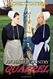 An Amish Country Quarrel: Volume 1 (Lancaster County Amish Quarrel Series (Living Amish))