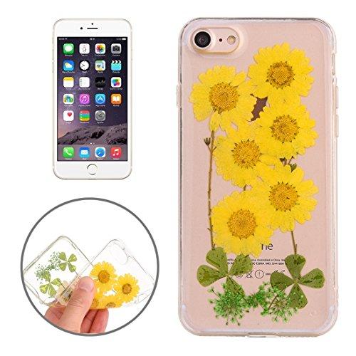 Easy go shopping custodia protettiva in tpu trasparente rigata con fiore reale essiccato a gocciolamento epossidico per iphone 6 e 6s (sku : ip6g2996p)