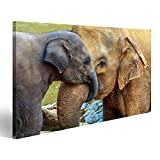 islandburner Bild Bilder auf Leinwand Kuschelnder Elefant und Baby-Elefant Wandbild, Poster, Leinwandbild EJH