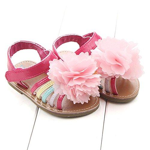Culater®I pattini dei capretti delle ragazze dei primi camminatori del bambino dei sandali del fiore del bambino Rosa caldo