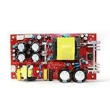 Q-BAIHE 200W Amplificador Digital Alimentación Tablero con Conmutación