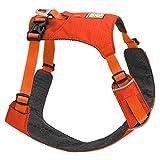 Ruffwear Leichtgewicht-Hundegeschirr, Große bis sehr große Hunderassen, Größenverstellbar, Größe: L/XL, Rot (Sockeye Red), Hi & Light Harness, 3082-601LL1