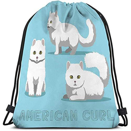 BOUIA Dateiformat des Zeichentrickfilm-Tiercharakters ENV der Kordelzug-Taschenkatze amerikanischen Locken