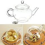 Aliciashouse 250ml 8,5 oz Théière en verre résistant à la chaleur bouilloire à thé