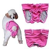 Septven Weiblich Hunde Schutzhose Haustier Unterhose Unterwäsche Welpenhose Hose Windel Hygieneunterhose Komfortabel, Atmungsaktiv (XS, Pink)