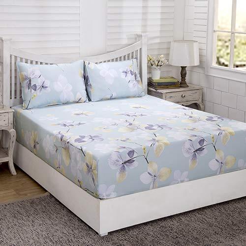 Maspar Superfine Essence 210 TC Cotton Double Bedsheet with 2 Pillow Covers - Floral, Blue