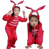 Disfraces de animales para niños Disfraz de pijama con capucha y unisex (Conejo rojo, XL (para niños de 135-150 cm de altura))