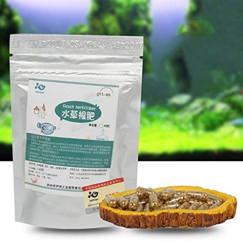 Erba Fertilizzante Nutrizione Taglio Tab Capsule Acquario Impianto Acqua Viva Daxibb Fish Tank