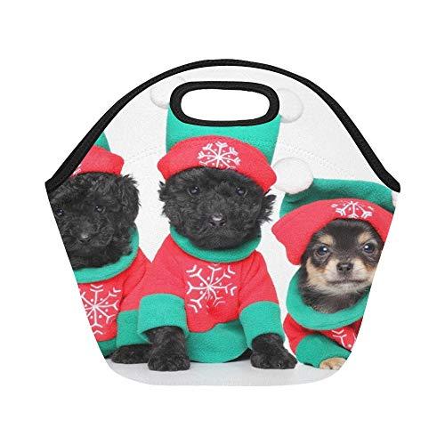 Insulated Neopren-Lunchpaket-Gruppe-Welpen-Weihnachtskostüme, die an aufwerfen Große wiederverwendbare thermische starke Mittagessen-Taschen-Taschen für Brotdosen für draußen Arbeit, Büro, Schule