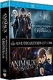 Animaux fantastiques : Les Crimes de Grindelwald [Blu-Ray]