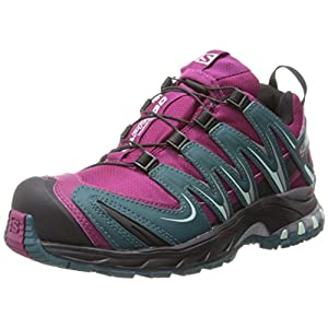 51EPtsfZewL. SS300  - SALOMON Women's XA PRO 3D CS WP W Trail Runner