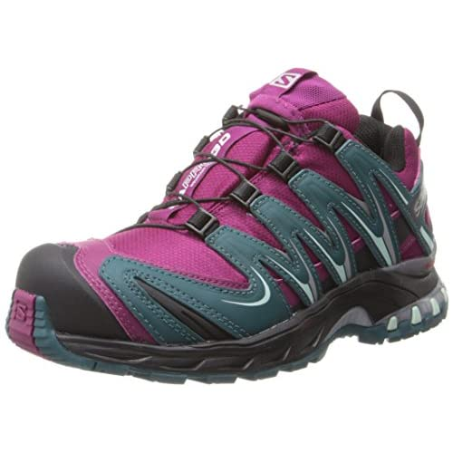 51EPtsfZewL. SS500  - SALOMON Women's XA PRO 3D CS WP W Trail Runner