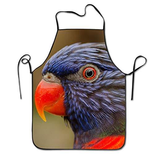 dfgjfgjdfj Chefs Schürze Birds Big Portrait Funny Küche Schürzes Cooking Schürze
