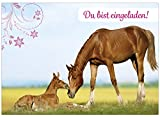 16 Einladungskarten zum Kindergeburtstag - Motiv Pferde - für Kinder, Jungen, Mädchen, Party Feier Geburtstagseinladungen Pferd im Set