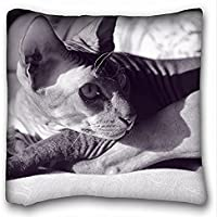 Decorativo Quadrato Throw Pillow Case animali Hairless