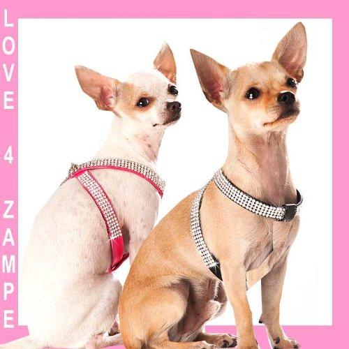 Chihuahua schwarz XXS Strass Brustgeschirr Hundegeschirr Geschirr für Hunde Artleder