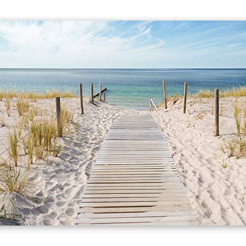 murando - Fototapete 300x210 cm - Vlies Tapete - Moderne Wanddeko - Design Tapete - Wandtapete - Wand Dekoration - Landschaft Natur Meer Strand blau beige c-A-0054-a-b (Strand Videos)