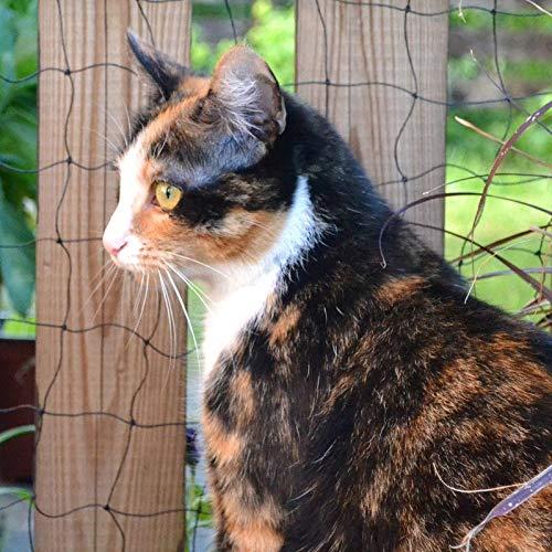 Donet Universalnetz 2 x 5 m Drahtverstärkt Katzenschutznetz, Vogelschutznetz, Maschenweite 30 mm