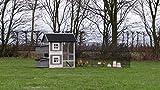 Hühnerstall Twin mit 2 Legenesten und auslauf Louis 371x99x134cm