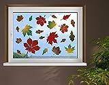 Klebefieber Fenstersticker Herbstblätter B x H: 40cm x 40cm