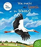 Was macht der Storch im Winter? Bewertung und Vergleich