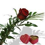Rote Rose mit Pralinendöschen