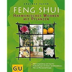 Feng Shui - Harmonisches Wohnen mit Pflanzen